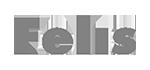 Logo Felis